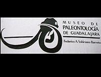 Paleontology Museum, Guadalajara